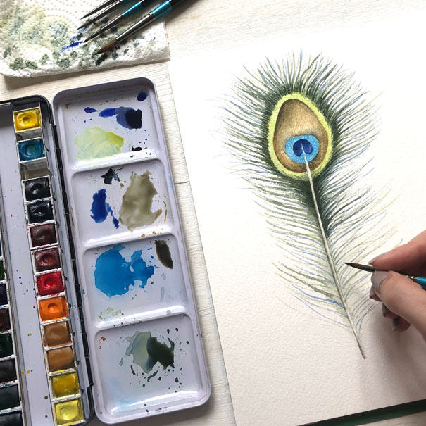 Learn how to paint this watercolour peacock feather