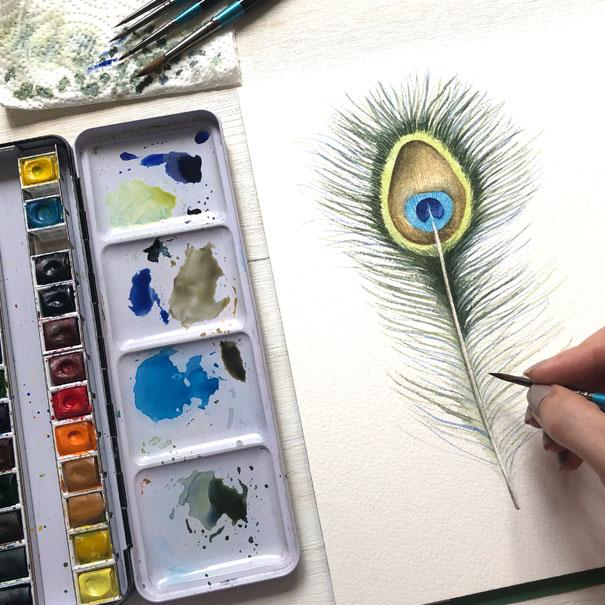 Watercolour Peacock Feather