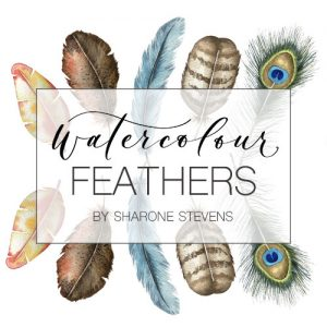 Watercolour Feathers Class Cover Image