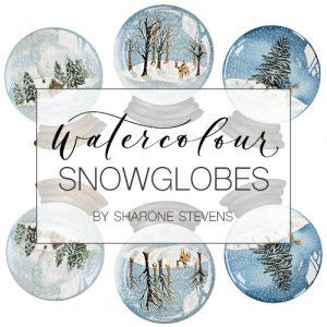 Watercolour Snowglobes Class Cover Image