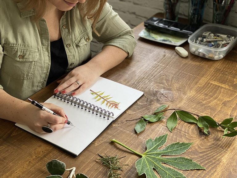 Sketching Leaves